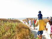 Summer Saving Wild Dunes Resort
