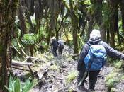 #RwenzoriDiary Week High Above Kilimanjaro!