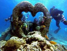 Scuba Diving Mactan: Unraveling Biological Gems Reef