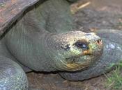 Explore Ecuador Galápagos Islands With Tara Tours