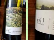 Reclaiming Galilee