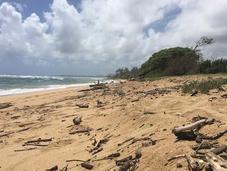 Long Weekend Kauai