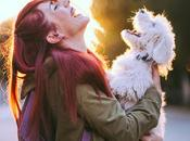 Love Your Prospects, Their Pets: Pet-Themed Promo Items Have Surprising Benefits