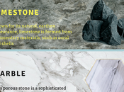 Types Natural Stone Flooring Infographic