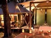 Discover Best Luxury Safari Camps Botswana!