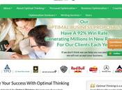Optimalthinking.com Review Business Plan Writing Service Optimalthinking