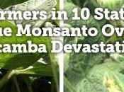 Weed Killer Designed Save Farms Devastating Them