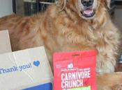 Reward Your Dog's Inner Carnivore #ChewyInfluencer