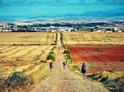 Path, Many Lives. Chemin, Plusieurs Vies. #benheinephotography #path #lives #photography #camino #santiago #nature #compostelles #buencamino #music #painting #beauty #musique #pilgrim #pilgrimage #faith #foi #photographie #chemin #marche #travel...