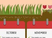 Season-by-season Guide Lawn Care
