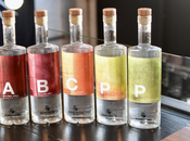 Brief Q&A with Owners Boardroom Spirits About Their Vie-Style Brandies