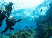 Essential Gear Family Diving Holiday