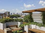 Great Rooftop Garden Ideas