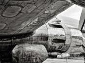 Douglas DC-6A, Everts Cargo