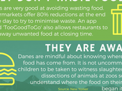 Environmentally Friendly Denmark [Infographic]