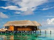 Restaurants Maldives Find Best Taste Delicious Food