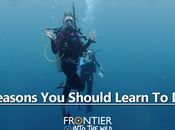 Reasons Should Learn Dive