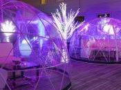 Godfrey's Rooftop Gets Fitted With See-Through Igloo Lounges