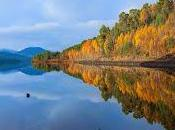 Boost Scotland's International Reputation Wilderness Wildlife