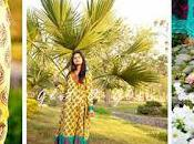 Designer Summer Lawn Collection 2012 Glitz Glam Alina's