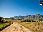 Destination Wedding: Rustic Farm Wedding Oaks Estate Greyton, South Africa: Part