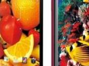 Huawei Ascend Released China, Soon Globalized