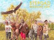 Stepdad Giving Glorious Glimpse Upcoming Debut [stream]