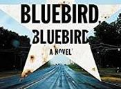 Bluebird, Bluebird Attica Locke- Feature Review
