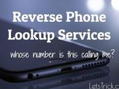 Reverse Phone Lookup Services: Free [Keep Secret]