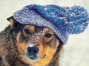 Winter Tips from #LondonWalks Guides No.2. Hats, Layers Viking Helmets @KimDewdney, @bigfoottreasure @jaxonharry