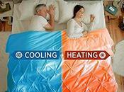 GOOD IDEA... WASTE MONEY? Climate Control Beds
