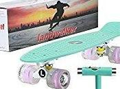 Landwalker Light Skateboard Review