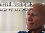 Sebastião Salgado: Father Forest