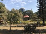Scenes from Cubbon Park