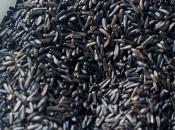 Benefits Niger Seeds