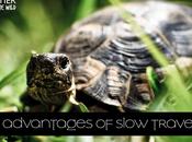 Advantages Slow Travelling