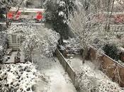Nightly #London #Photoblog 23:02:18: Flurry Snow December