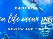 Bangkok Life Ocean World Review Tips