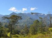 Want Join Trek Across Papua Guinea Conservation?