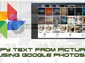 Copy Text From Picture Using Google Photos