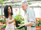 Know Plants from Nursery Plant Centre Healthy