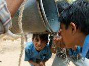 Should Bother About Water Crisis? Enjoy Life #CuttingPaani #IndiChange @Livpurewater