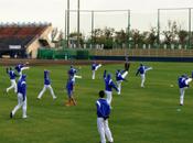Organize Baseball Practice