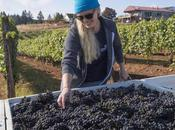 Latest Wines Vines Magazine: Seeking Perfection Pinot Noir