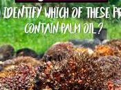 QUIZ: Identify Which These Products Contain Palm Oil?