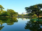 Yangon Kandawgyi Park
