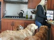 Healthy Eating Family Affair with Dogs