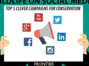 Wildlife Social Media: Clever Campaigns Conservation