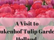 Visit Keukenhof Tulip Gardens Holland