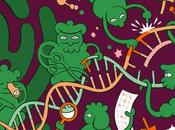 Massive Science GMOs Report